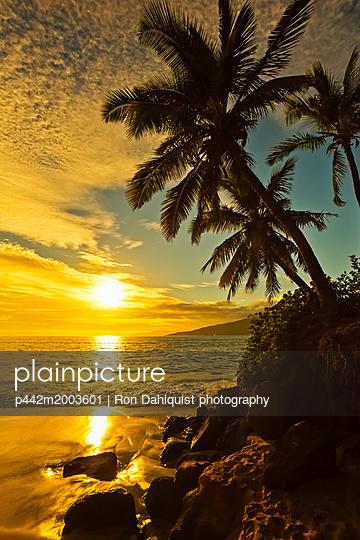p442m2003601 von Ron Dahlquist photography