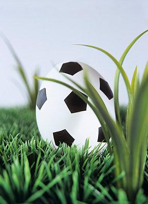 Fußball in Eiform - p2370366 von Thordis Rüggeberg