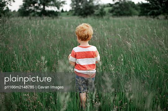 p1166m2148785 von Cavan Images