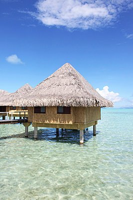 French Polynesia - p045m696828 by Jasmin Sander