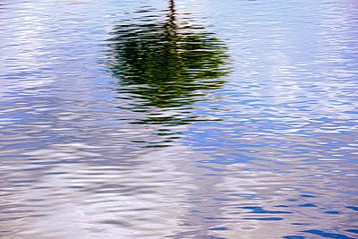 Einzelner Baum spiegelt sich in der Wasseroberfläche - p1057m2099899 von Stephen Shepherd