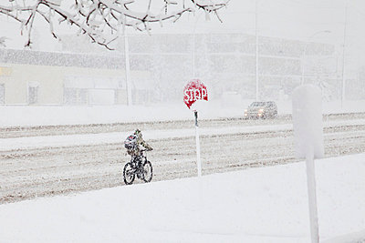 Cyclist riding in the snow during a spring snow storm; Edmonton alberta canada - p442m824529 by LJM Photo