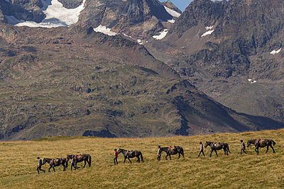 Plateau d'Emparis trip with horses - p910m1159402 by Philippe Lesprit