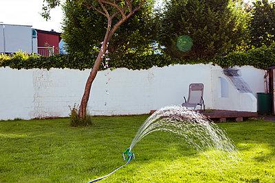 Rasensprenger im Garten - p432m1441583 von mia takahara
