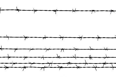 Stacheldrähte - p4500329 von Hanka Steidle