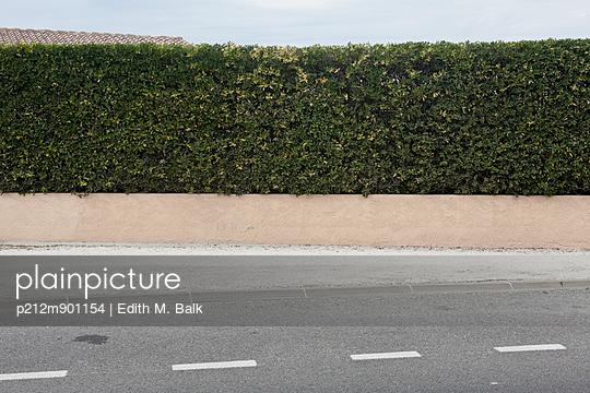 Hecke an der Straße - p212m901154 von Edith M. Balk