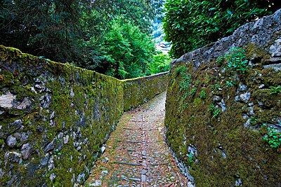 Trail, Villa Beccaria, Sala Comacina, Como Lake, Italy.  - p1403m1482695 by Marka photography