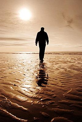 Einsame Wattwanderung - p597m660817 von Tim Robinson