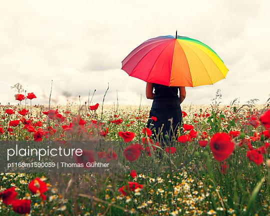 Sommerregen im Mohnfeld - p1168m1590059 von Thomas Günther