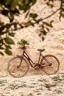 Altes Fahrrad beim Feigenfest - p1021m2020396 von MORA