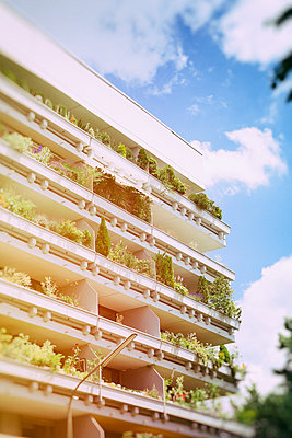 Balconies with plants - p1149m1147237 by Yvonne Röder