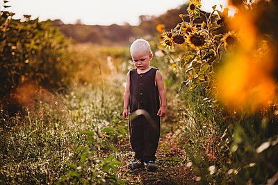 Blonde toddler standing in a sunflower field looking down and sad - p1166m2212677 by Cavan Images