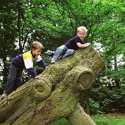 Kinder klettern auf einem Baum - p1231m1057984 von Iris Loonen