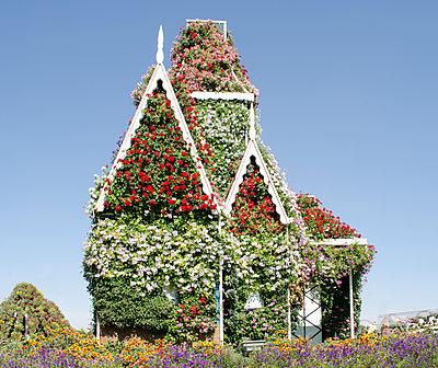 Gingerbread House gone Flower Power - p1277m1160037 by Hanna Orlowski