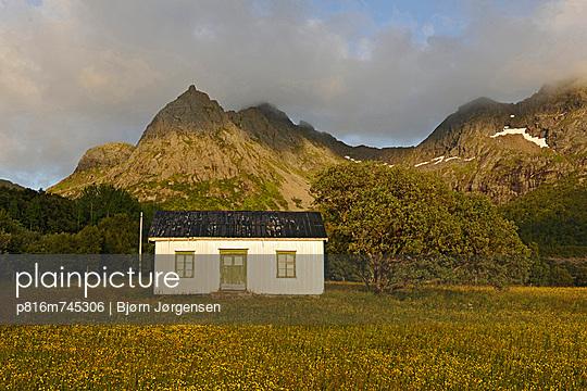 p816m745306 von Bjørn Jørgensen