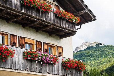 Alpine house - p488m932696 by Bias