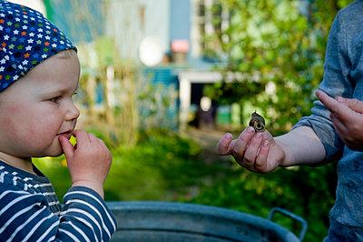 Kinder spielen mit Schnecken - p116m1564159 von Gianna Schade