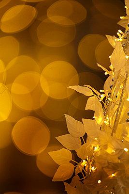 Christmas Illuminations - p307m1011973f by Tetsuya Tanooka