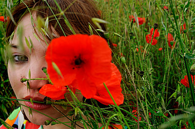 Too many poppies - p491m1125067 by Ernesto Timor