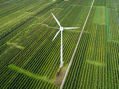 Windkraftanlage im Obstanbaugebiet Altes Land - p1079m2157696 von Ulrich Mertens