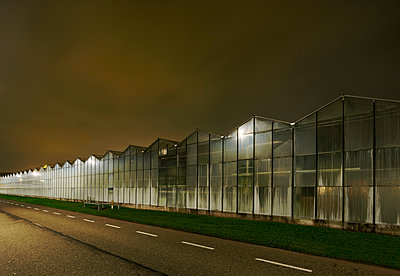 Greenhouse at night, in Westland,  area with the highest concentration of greenhouses in Netherlands - p429m1557419 by Mischa Keijser