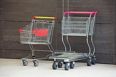 Shopping carts - p30119120f by Vladimir Godnik