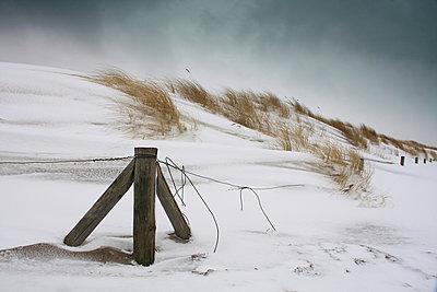 Schneesturm - p979m909914 von Opelka