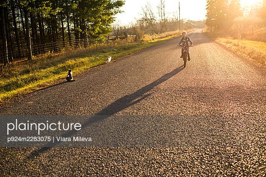 Canada, Ontario, Boy riding bike on rural road at sunset - p924m2283075 by Viara Mileva