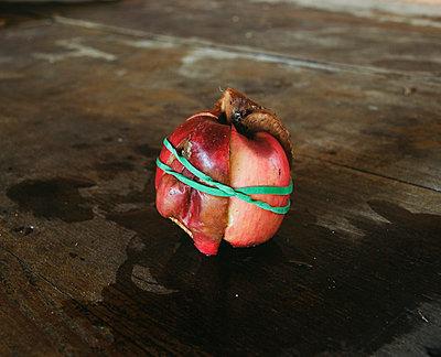 Alte Äpfel verbinden - p4530086 von Mylène Blanc