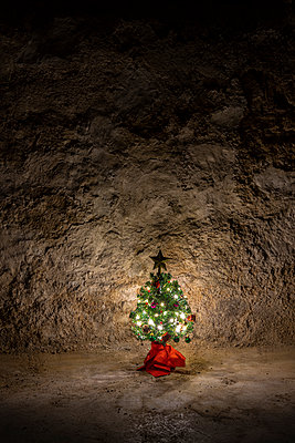 Small Christmas tree in front of stone wall - p1625m2228453 by Dr. med.