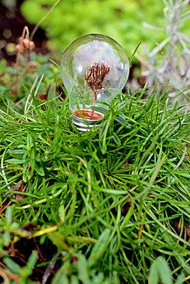 Grüne Energie - p728m883282 von Peter Nitsch