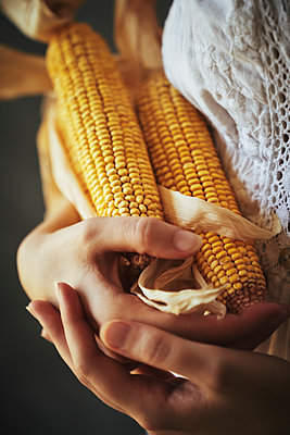 Woman holding corncobs - p968m2020219 by roberto pastrovicchio