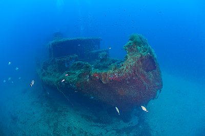 France, Corsica, Underwater view of Alcione C shipwreck - Italian tanker shelled and sunk during World War II - p300m2154105 by Christian Zappel