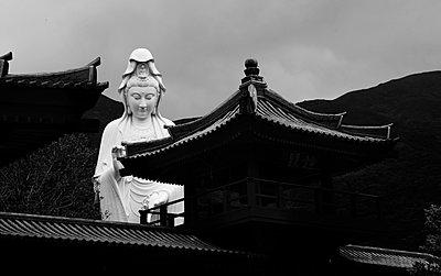Tsz Shan Monastery Buddha Statue - p664m2087197 by Yom Lam