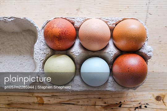 Different eggs in a box - p1057m2285944 by Stephen Shepherd