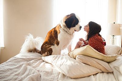 Young girl sitting on bed with large dog about to kiss him on the nose - p1166m2136741 by Cavan Images