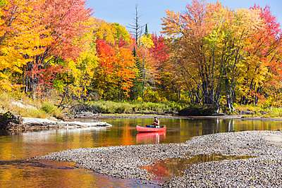 A man canoes through shallow water in a Maine river. Fall. - p1166m2094343 by Cavan Images