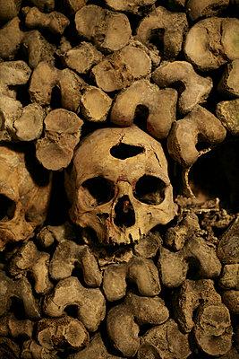 Skull - p1028m912277 by Jean Marmeisse