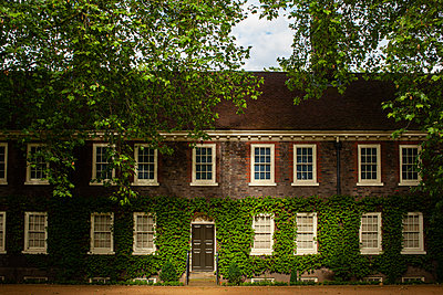 Ivy growing on facade of brick building - p1291m2211058 by Marcus Bastel