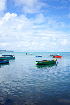 Fishing boats in the bay - p304m1222051 by R. Wolf