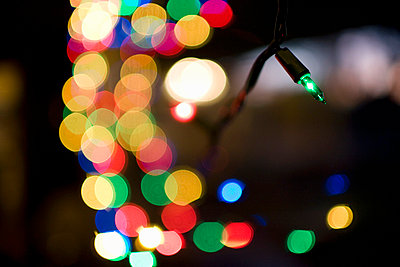 Fairy lights - p4890114 by Charles Gullung