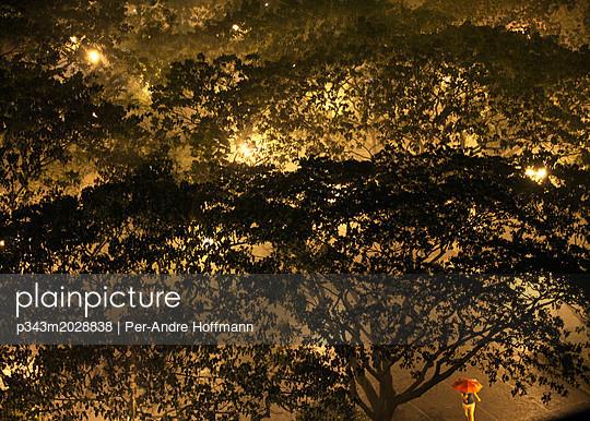 Downpour in Salcedo Park in Makati City, Makati, Manila, Philippines - p343m2028838 by Per-Andre Hoffmann