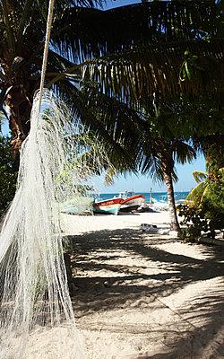 Karibik - p045m792482 von Jasmin Sander