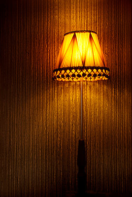 Lamp shade - p5970348 by Tim Robinson