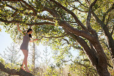 Young woman climbing in tree - p956m1136859 by Anna Quinn