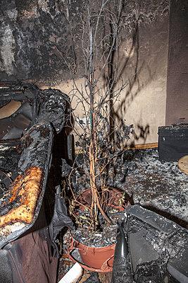 Wohnungsbrand - p060m1034675 von Dieter John