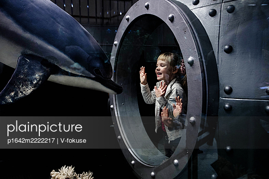 Girl looks at dolphin through safety glass - p1642m2222217 by V-fokuse