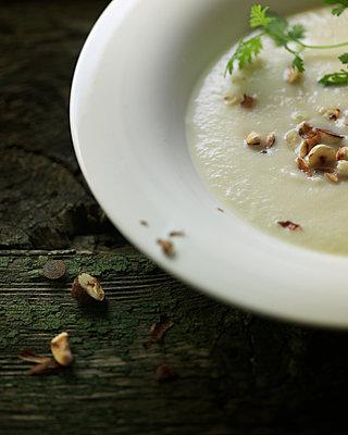 Parsnip soup - p922m2071544 by Juliette Chretien