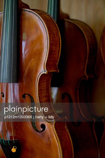 Geigenkorpus - p1212m1203365 von harry + lidy