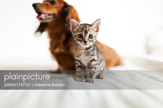 p300m1157121 von Valentina Barreto